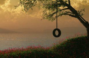 صورة صور غلاف الفيس , اجمل و اجدد الصور لغلاف الفيس بوك