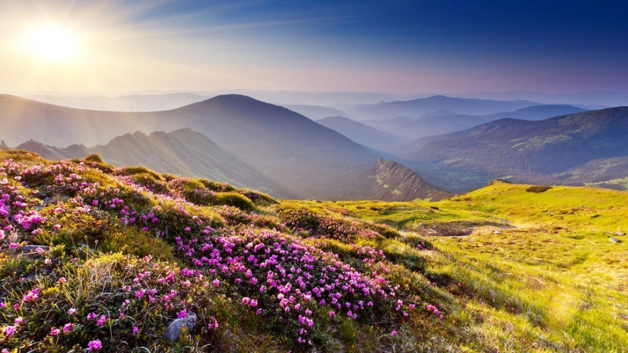 صور صور من الطبيعة , الطبيعه في افضل صورها