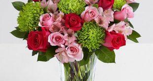 صورة تحميل صور ورد , الورد و جماله للتحميل علي الهاتف