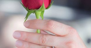 صور صور جميلة للفيس بوك , صور متنوعة للفيس بوك و جميلة جدا