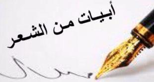 صورة بيت شعر مدح بالفصحى , من اجمل اشعار المديح بالفصحى