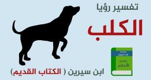 صورة تفسير رؤية الكلاب , الكلب في المنام