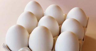 صورة جمع البيض للمتزوجة في الحلم , ما تفسير رؤية جمع البيض