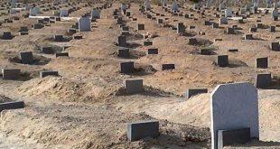 صورة حكم زيارة القبور , فضل ووقت زيارة القبور