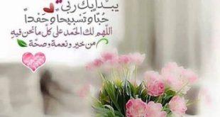 صورة رمزيات صباح الخير , صباحك كله ورد