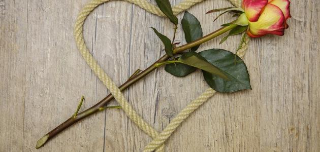 صورة ما هي درجات الحب , مراحل الحب والشوق