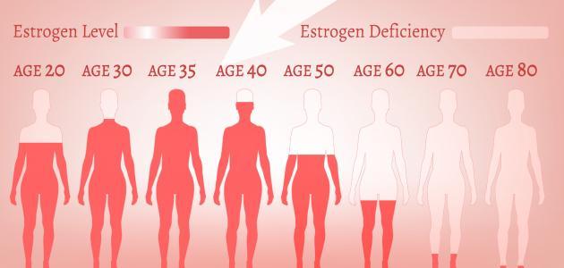 صورة دور هرمون الاستروجين , لمعرفة اهمية دور الاستروجين لدي الانسان
