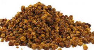 صورة فوائد عكبر النحل , صمغ النحل وفائده