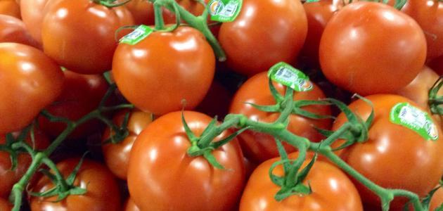 صورة تصبير الطماطم في الثلاجة , طريقة تجفيف الطماطم