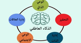 صورة ما هو الذكاء العاطفي , عادات من يمتلكون الذكاء العاطفي