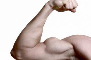 صورة تقوية عضلات اليد , كيف تقوي عضلات اليد