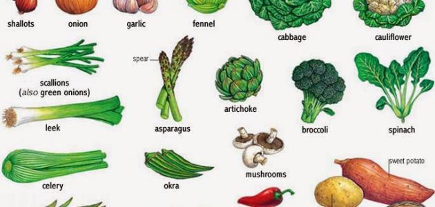 صورة اكلات تساعد علي حرق الدهون بسرعه , اكلات مفيدة للتخسيس