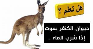 هل تعلم عن الحيوانات